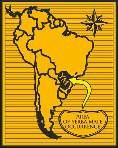 Area-Yerba-MAte
