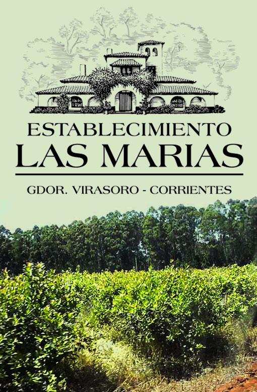LAS_MARIAS_plantacja_logo