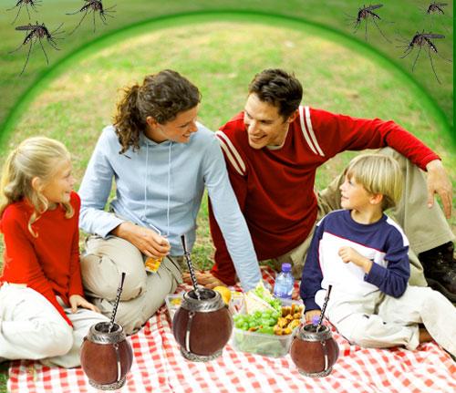 Piknik_bez_komarow