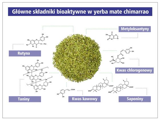 Główne składniki bioaktywne w yerba mate chimarrao