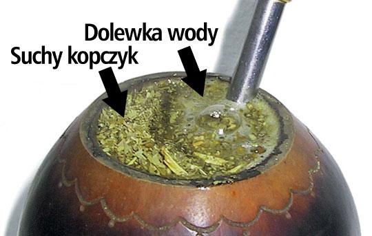 Tykwa_kopczyk